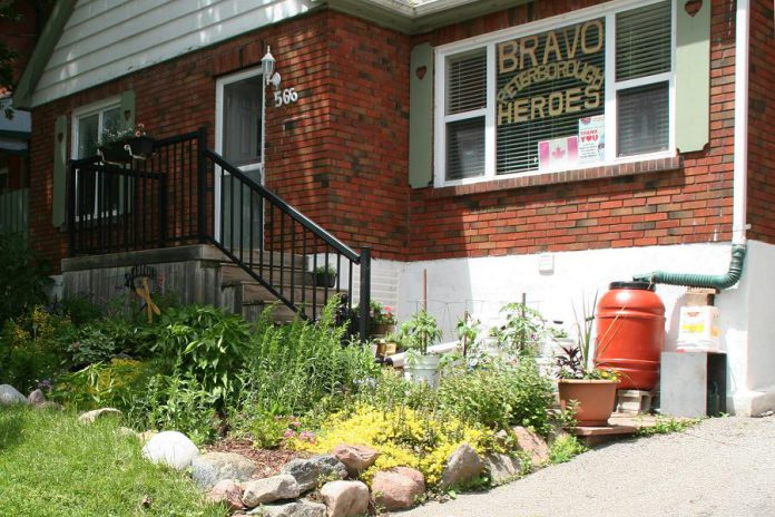 Peterborough residents have embraced rain barrels as a way to conserve water, with rain barrel sales at the GreenUP store up 51 per cent year over year. The City of Peterborough and GreenUP also recently launched a Rain Garden Subsidy Program to help property owners design and install their own rain garden. Rain gardens can mitigate flooding, improve habitat for native pollinators, and save you money. (Photo courtesy of GreenUP)