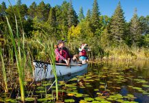 On July 1, 2020, you can spend a day at one of Ontario's 330 provincial parks for free. Capacity will be limited at Ontario's most popular parks. (Photo: Ontario Parks)