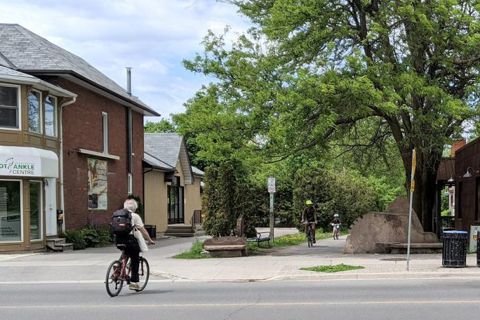 The Rotary Greenway Trail, which runs from Roger's Cove in the south to past Trent University in the north, is a popular route for cyclists. (Photo: Bruce Head / kawarthaNOW.com)
