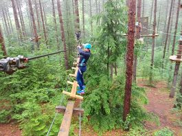 kawarthaNOW writer Paula Kehoe navigates between trees at Treetop Trekking in the Ganaraska Forest near Port Hope in 2017. The forest adventure company has opened for the season at five of its six locations in Ontario, including Ganaraska. (Screenshot)