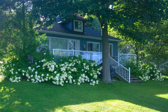 Ann Adare opened Dunraven Cottage on Pigeon Lake in Bobcaygeon in 2019. Among other things, the Trent-Severn Trail Town program helped promote her business and make it more attractive to visitors travelling along the Trent-Severn Waterway. (Photo courtesy of Dunraven Cottage)