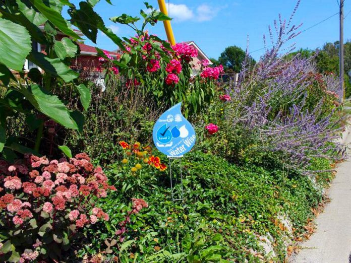 A Water Wise garden is a garden that employs methods of conserving water. GreenUP recognizes lawns of homeowners and businesses as Water Wise if they use things like rain barrels or drought-tolerant species. (Photo courtesy of GreenUP)