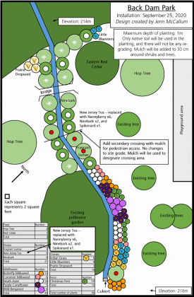 The planting plan for the Back Dam Park in Warsaw was developed by GreenUP's Jenn McCallum. The new garden will feature a total of 96 plants, including trees, shrubs, and wildflowers along the south-western side of the park. (Graphic: GreenUP)