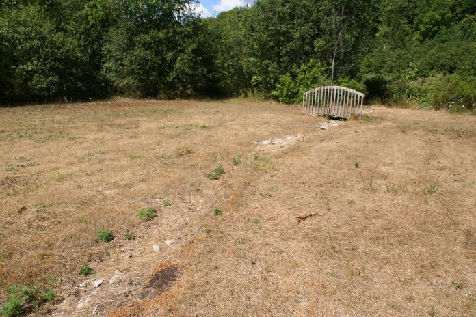 This photo shows the planting area for the September 25th event during drought. There is a tributary that flows in the spring and dries up in the summertime. The new plants will clean the water and stabilize the banks of the tributary while tolerating summer droughts. (Photo: GreenUP)