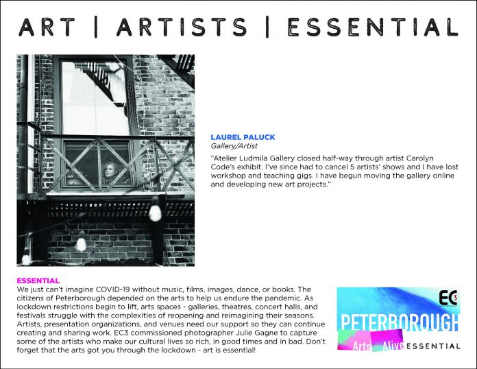 Gallery/artist Laurel Paluck - The Essential Project. (Photo by Julie Gagne, design by Rob Wilkes)