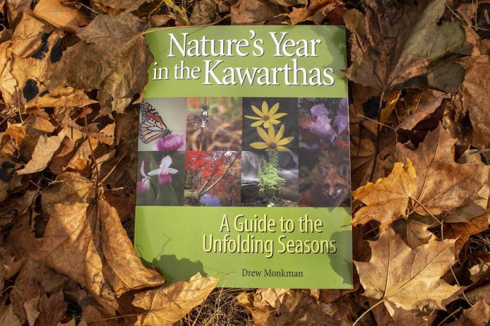 """""""Nature's Year"""" by local naturalist Drew Monkman is an almanac of the key events occurring in the natural world over the course of a year in the Kawartha Lakes district. An excellent resource to enjoy awe in nature in any season, the book is available for  $34.99 at the GreenUP Store and is also available in hardcopy and as an electronic resource at the Peterborough Public Library. (Photo: Leif Einarson)"""