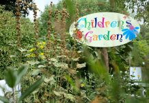 For many years, the children's garden at Ecology Park has been one of the most popular learning spaces for Peterborough-area children. This year, GreenUP is asking for donations to revitalize this space and establish one of the region's first naturalized playscapes on public parkland. It's part of GreenUP's five-year capital fundraising campaign to grow Ecology Park so it can better support this generation of impact and help create the leaders of a carbon-neutral world. (Photo: Ben Hargreaves)