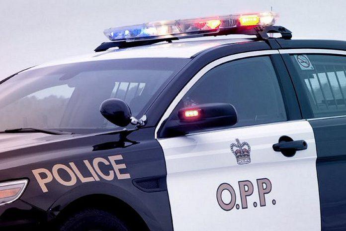 OPP police car. (Photo: OPP)