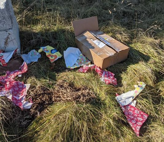 The remnants of the package Dana Mason had delivered from Ottawa to her son's home in Peterborough were discovered on November 29, 2020, near the Sherbrooke Street water tower by Lisa Ann Mikaric while she walking her dog. The package, which contained Christmas and birthday gifts, was stolen from Mason's son's home November 26 shortly after it was delivered by Canada Post. (Photo courtesy of Lisa Ann Mikaric)