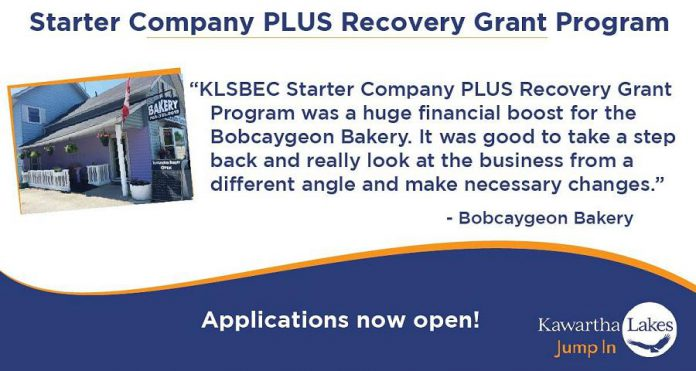 Kawartha Lakes Starter Company Plus  Small Business Recovery Grant Program