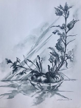 'Beauty of the Beets', an ink-on-paper work by Lesley Drummond available for purchase  through the Kawartha Lakes Arts Council's online marketplace. (Photo courtesy of Kawartha Lakes Arts Council and the artist)