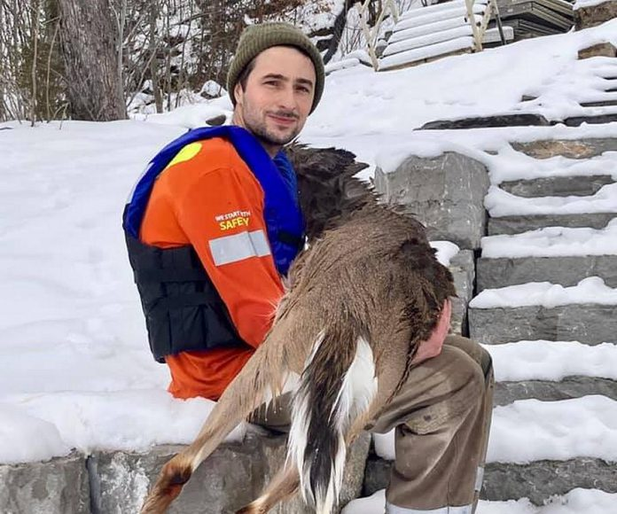 A Buckhorn man, identified only by his first name Rob, with the deer he rescued after it had fallen through the ice on Lower Buckhorn Lake on January 14, 2021. After recovering, the deer returned to the woods. (Photo: Shelley Fine / Facebook)