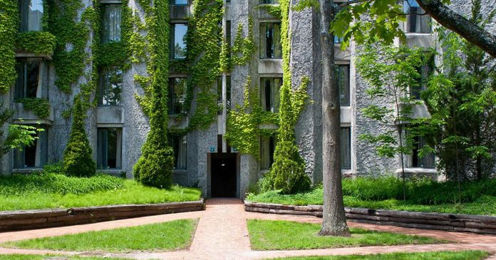 The Champlain College student residence, located on Trent University's Symons Campus in Peterborough, provides housing for more than 200 students. (Photo: Trent University)