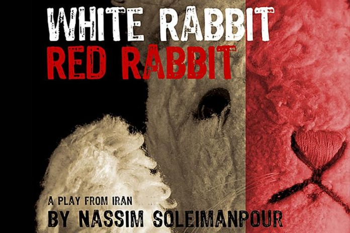 "Public Energy with support from 4th Line Theatre presents Beau Dixon in the critically acclaimed play ""White Rabbit Red Rabbit"" by Iranian playwright Nassim Soleimanpour on March 13, 2021 -- one year after the pandemic forced all theatrical venues to close. (Graphic: Public Energy)"