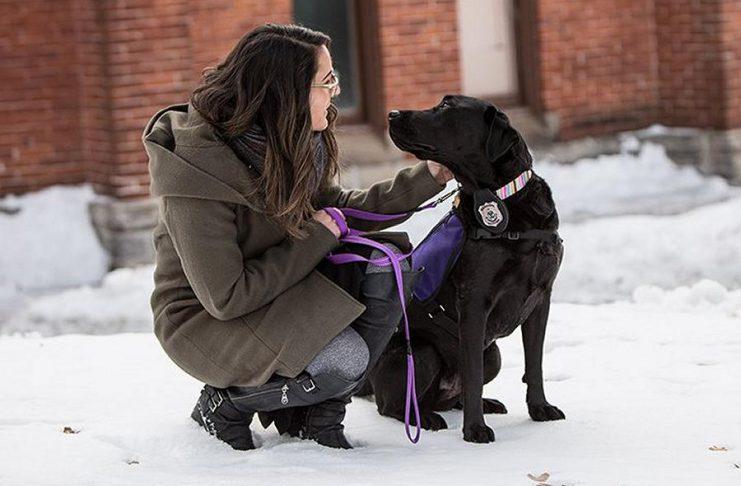Peterborough Police Service victim services coordinator Alice Czitrom with facility dog Pixie. (Photo: Peterborough Police Service)