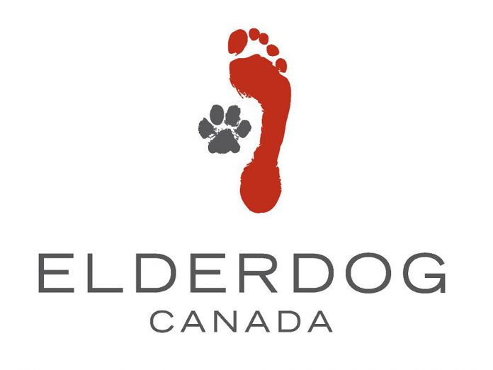 """ElderDog Canada has local chapters (""""Pawds"""") across Canada. In Ontario, there are Pawds in Ottawa, Kingston, Toronto, Halton, Collingwood, and Guelph. Local resident Catherine Ducharme is working to establish a Pawd in Peterborough by summer 2021. (Graphic: ElderDog Canada)"""