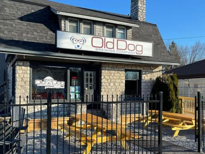 After four years of preparations, Old Dog Brewing Company in Bobcaygeon opened the doors to their taproom and brewery on March 27th. (Photo: Old Dog Brewing Company)