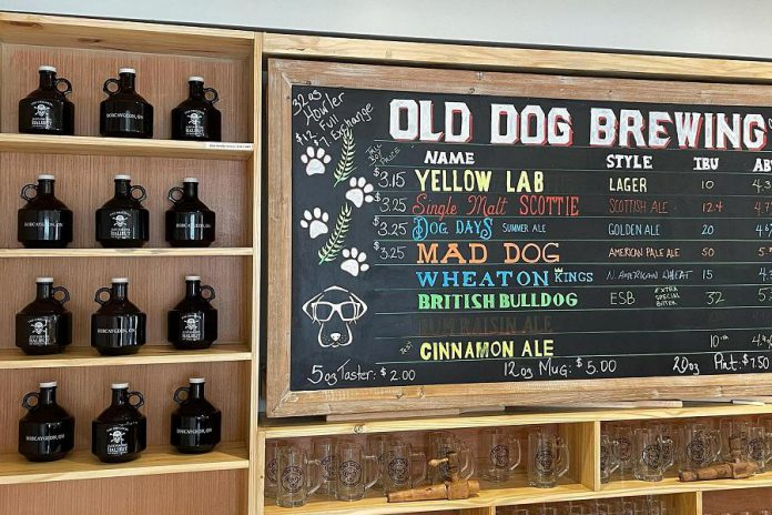 New test flavours are available to try at Old Dog Brewing Company's brewery and taproom. (Photo: Old Dog Brewing Company)