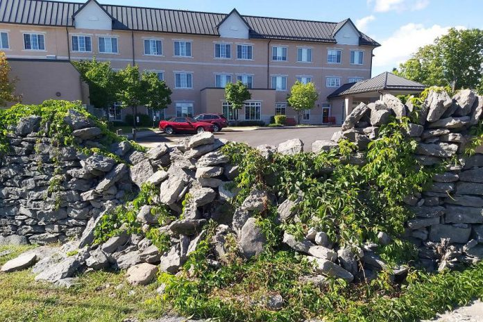 A section of the historic Edgewood dry stone wall requiring restoration. The wall used to surround the Boyd family's Edgewood estate, which was torn down in 2005 and replaced with Case Manor long-term care home, pictured in the background. (Photo: Heritage Evaluation Report, September 2020)