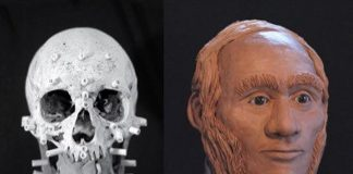 A facial reconstruction of what Warrant Officer John Gregory may have looked like, based on a DNA sample collected from a direct living descendant. A team of researchers at Trent University, University of Waterloo, and Lakehead University compared the descendant's DNA to DNA collected from tooth and bone samples that are more than 170 years old to confirm the remains are those of John Gregory, an engineer aboard HMS Erebus. (Photo: Diana Trepkov / University of Waterloo)