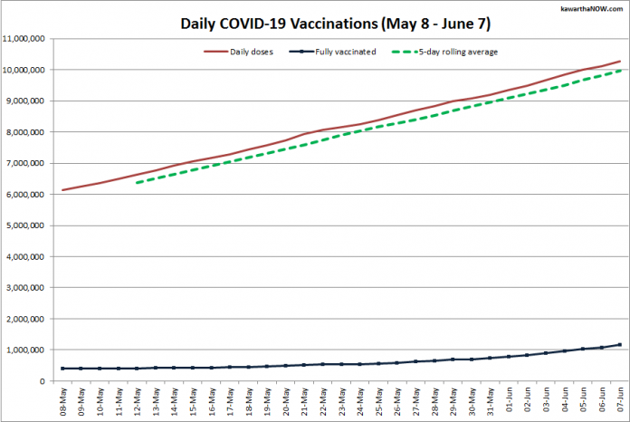 COVID-19 vaccinations in Ontario from May 8 - June 7, 2021. The red line is the cumulative number of daily doses administered, the dotted green line is a five-day rolling average of daily doses, and the blue line is the cumulative number of people fully vaccinated with two doses of vaccine. (Graphic: kawarthaNOW.com)