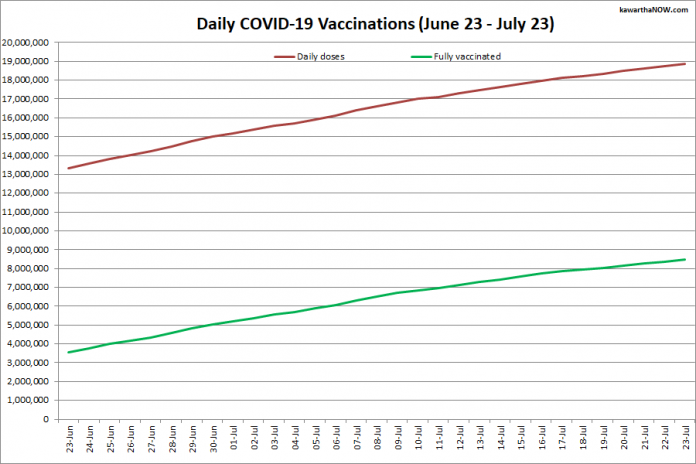 COVID-19 vaccinations in Ontario from June 23 - July 23, 2021. The red line is the cumulative number of daily doses administered and the green line is the cumulative number of people fully vaccinated with two doses of vaccine. (Graphic: kawarthaNOW.com)