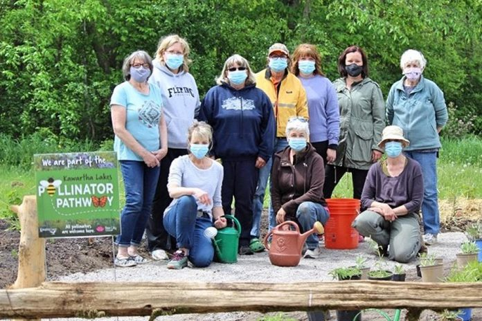 Volunteers gather for planting day in May 2021 at the pollinator garden at Reaboro Park in Reaboro, between Omemee and Lindsay in the City of Kawartha Lakes. Organizer Marnie Callaghan says the project, which garnered its volunteers through word-of-mouth and Facebook, has been a fantastic community-builder while also helping the environment. (Photo: Elayne Windsor)