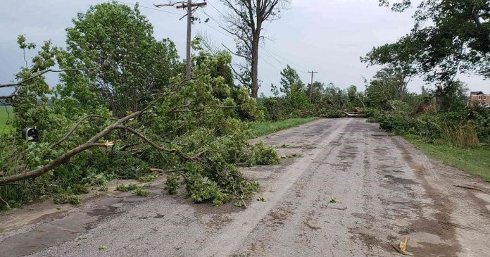 When police and emergency crews were called to the farm house, downed tress made the road impassable for emergency vehicles until they were cleared. (OPP-supplied photo)