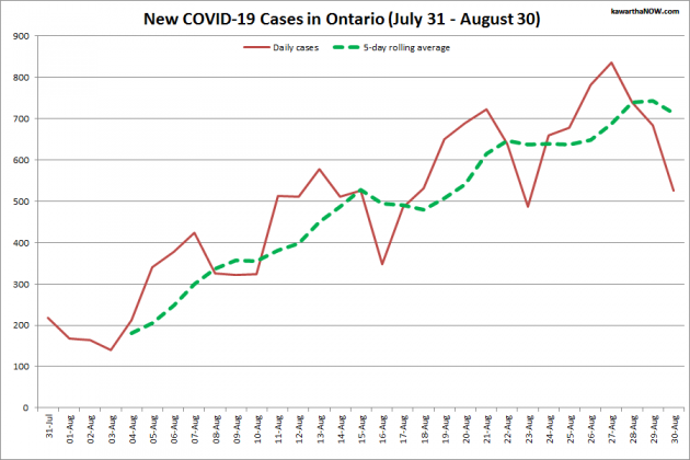 COVID-19 cases in Ontario from July 31 - August 30, 2021. The red line is the number of new cases reported daily, and the dotted green line is a five-day rolling average of new cases. (Graphic: kawarthaNOW.com)