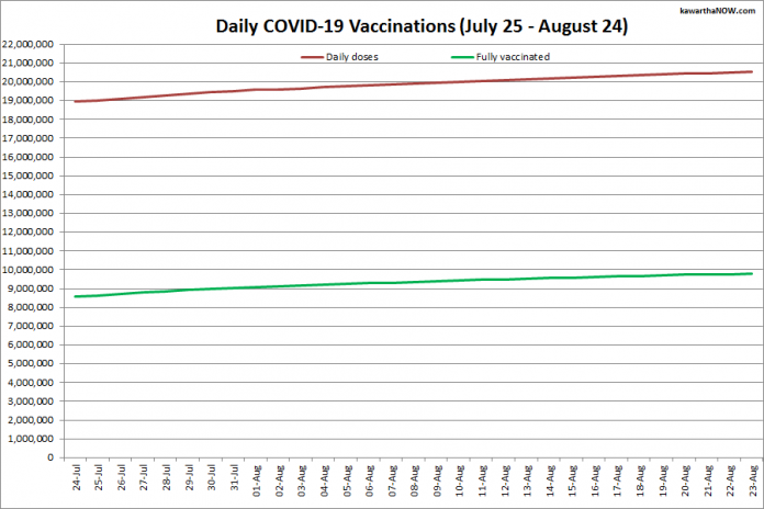 COVID-19 vaccinations in Ontario from July 25 - August 24, 2021. The red line is the cumulative number of daily doses administered and the green line is the cumulative number of people fully vaccinated with two doses of vaccine. (Graphic: kawarthaNOW.com)