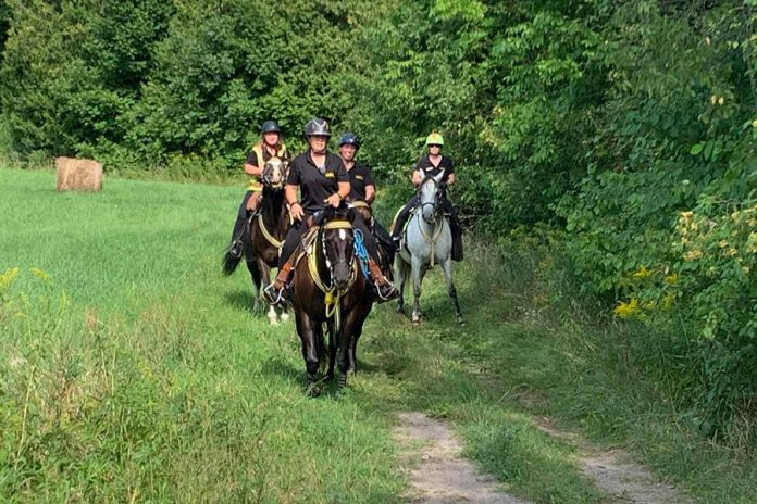 Volunteers with the Ontario Mounted Special Service Unit are among those who have been searching an extensive area for the missing horses over the past week. Searches, which have also been conducted on foot, by ATV, and by drone, have found no sign of the two horses. (Photo: Ontario Mounted Special Service Unit / Facebook)