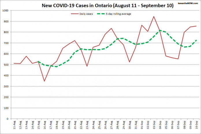 COVID-19 cases in Ontario from August 11 - September 10, 2021. The red line is the number of new cases reported daily, and the dotted green line is a five-day rolling average of new cases. (Graphic: kawarthaNOW.com)