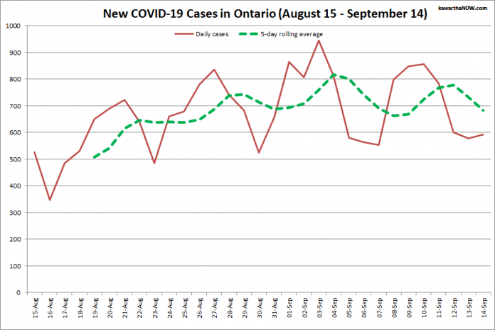 COVID-19 cases in Ontario from August 15 - September 14, 2021. The red line is the number of new cases reported daily, and the dotted green line is a five-day rolling average of new cases. (Graphic: kawarthaNOW.com)