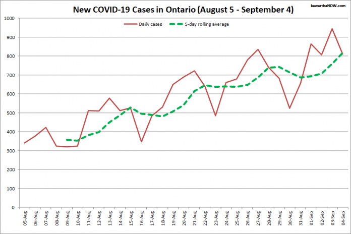 COVID-19 cases in Ontario from August 5 - September 4, 2021. The red line is the number of new cases reported daily, and the dotted green line is a five-day rolling average of new cases. (Graphic: kawarthaNOW.com)