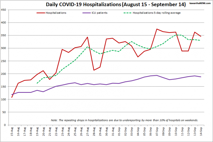 COVID-19 hospitalizations and ICU admissions in Ontario from August 15 - September 14, 2021. The red line is the daily number of COVID-19 hospitalizations, the dotted green line is a five-day rolling average of hospitalizations, and the purple line is the daily number of patients with COVID-19 in ICUs. (Graphic: kawarthaNOW.com)