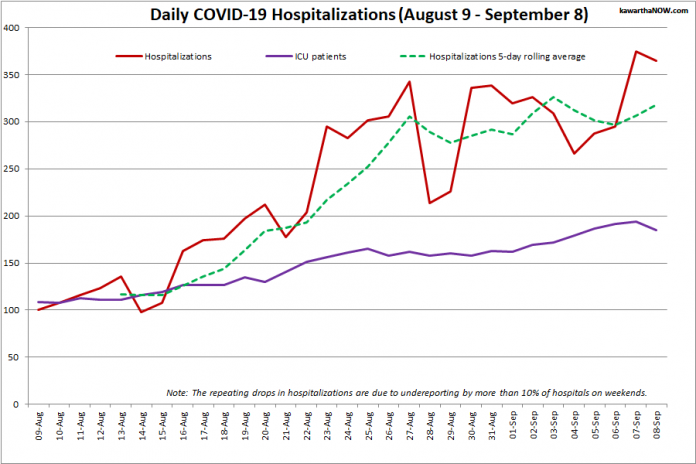 COVID-19 hospitalizations and ICU admissions in Ontario from August 9 - September 8, 2021. The red line is the daily number of COVID-19 hospitalizations, the dotted green line is a five-day rolling average of hospitalizations, and the purple line is the daily number of patients with COVID-19 in ICUs. (Graphic: kawarthaNOW.com)