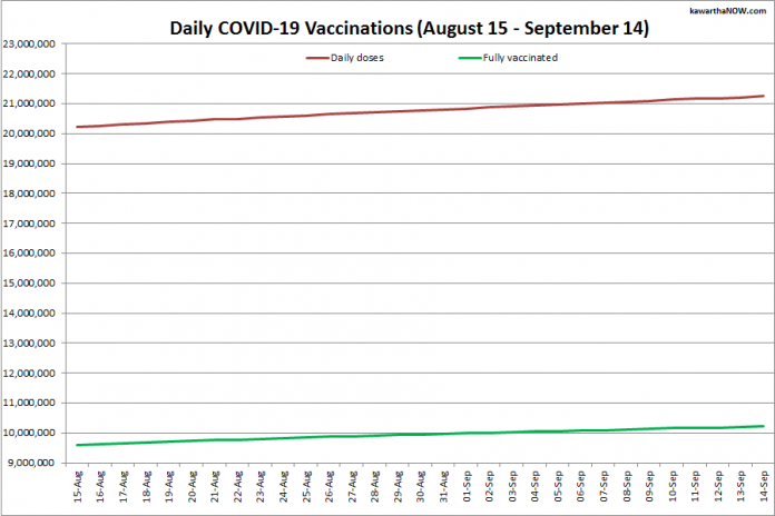 COVID-19 vaccinations in Ontario from August 15 - September 14, 2021. The red line is the cumulative number of daily doses administered and the green line is the cumulative number of people fully vaccinated with two doses of vaccine. (Graphic: kawarthaNOW.com)