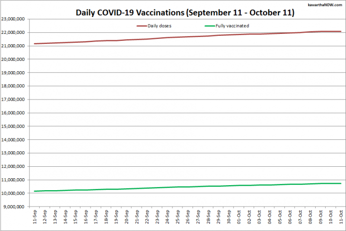 COVID-19 vaccinations in Ontario from September 11 - October 11, 2021. The red line is the cumulative number of daily doses administered and the green line is the cumulative number of people fully vaccinated with two doses of vaccine. (Graphic: kawarthaNOW.com)